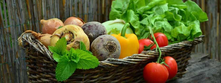 <blockquote><h3>Mit Ihrer Ernährung gestalten Sie Ihre Gesundheit</h3>Es ist nicht so einfach sich bei der Ernährung zurecht zu finden. In unserer Online-eMail-Beratung erfahren Sie alles, was echt gesund ist, vor allem wenn Sie krank sind.</blockquote>